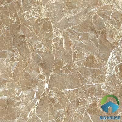 Gạch lát nền Viglacera 60×60 UB 6601