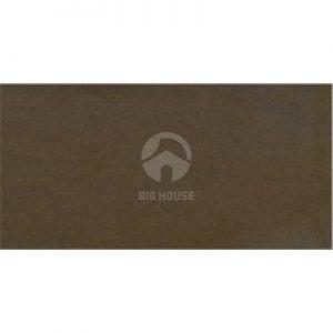 Gạch ốp tường Taicera 30x60 G63911