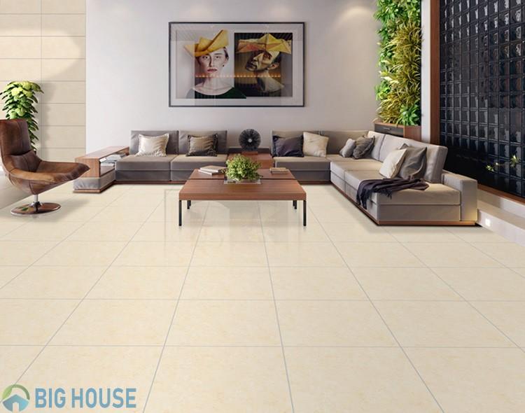 mẫu gạch lát phòng khách đẹp 4