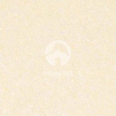 Gạch lát nền Taicera 60x60 P67703