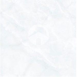 Gạch lát nền TTC 60x60 PN66033