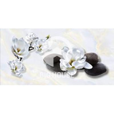 gach-op-tuong-hoan-my-40x80-18017