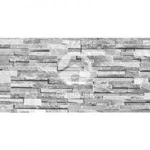 Gạch ốp tường Royal 20x40 RGK3D2438