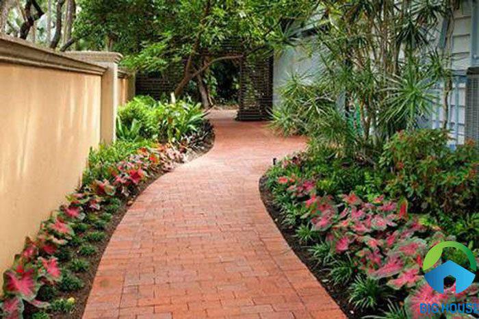 các loại gạch lát sân vườn 17