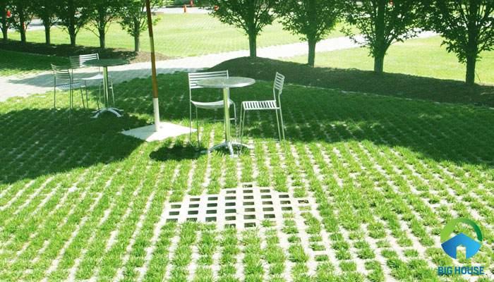 Gạch cỏ lát sân vườn: 20 mẫu ấn tượng cho không gian tươi mới