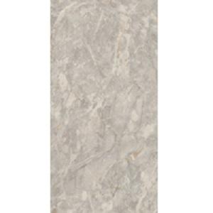 Gạch lát nền Đồng Tâm 40x80 4080FANSIPAN005-H+