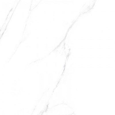 Gạch lát nền Viglacera 60×60 ECO S601