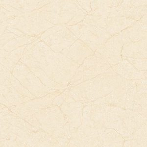 Gạch lát nền Tasa 60x60 6301