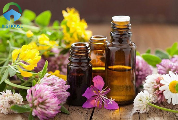 Lựa chọn hương thơm tinh dầu tùy theo sở mỗi gia chủ