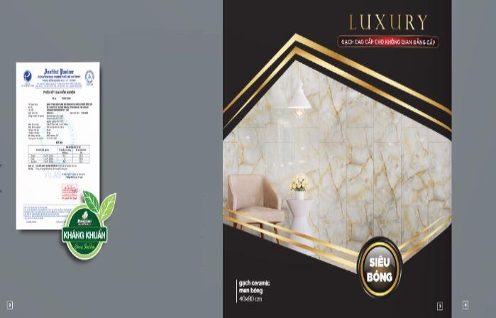 Bộ sưu tập gạch Luxury Đồng Tâm
