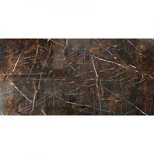 Gạch lát nền Apodio 60×120 26010