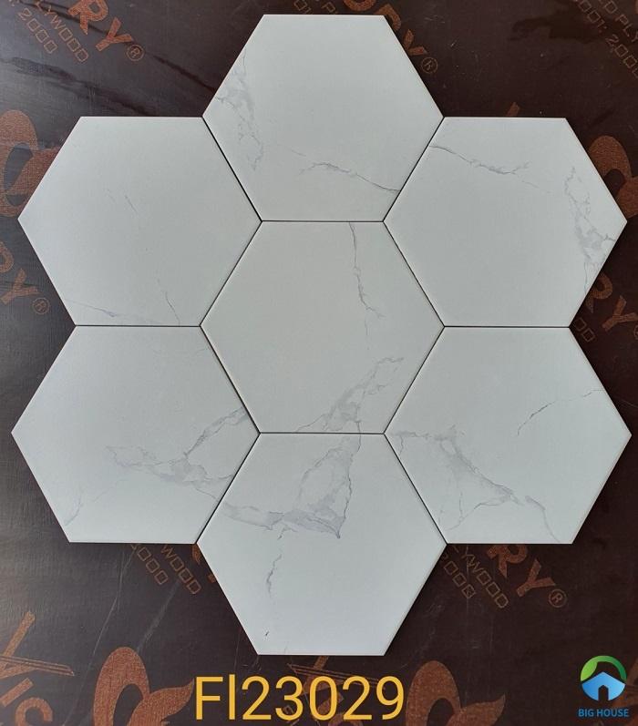 gạch lục giác FI23029